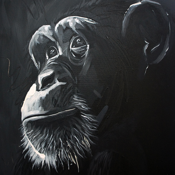 Hopeful Chimp